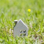 草原の中の白い家